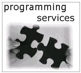 programming services
